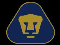 logopumasunam28129